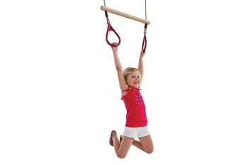 Trapeze Bar With Triangle Grips and Ropes RED