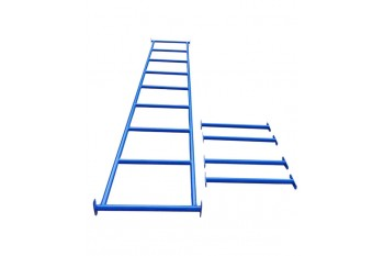 Monkey Bars BLUE With Step Rails