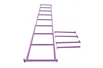Monkey Bars PURPLE With Step Rails